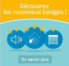 Badge home page.JPG
