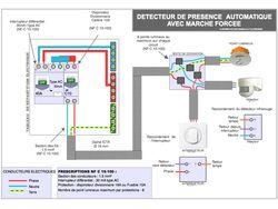 schema-electrique-detecteur-presence-automatique-marche-forcee.jpg