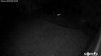Screenshot Camera_3.png