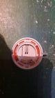 Badge Somfy.jpg
