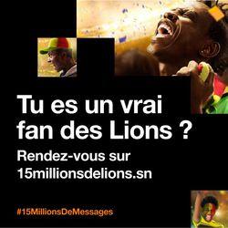 15millionsdelions.jpg