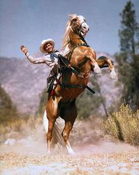 Trigger et Roy Rogers.jpg