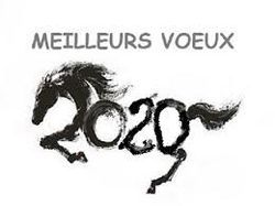 cheval 2020.jpg