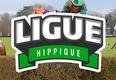 ligue_hippique_3disciplines_petite_pi_ce_jointe_original.jpg