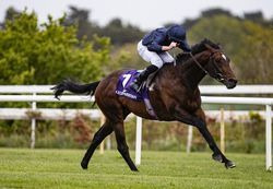 Bolshoi-Ballet-storms-clear-in-the-Group-3-Derby-Trial-at-Leopardstown-1.jpg