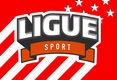 Ligue-Sport-usa.jpg