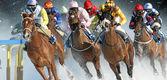 Horses-on-ice.jpg