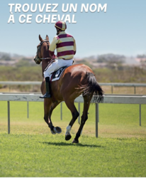 cheval.PNG