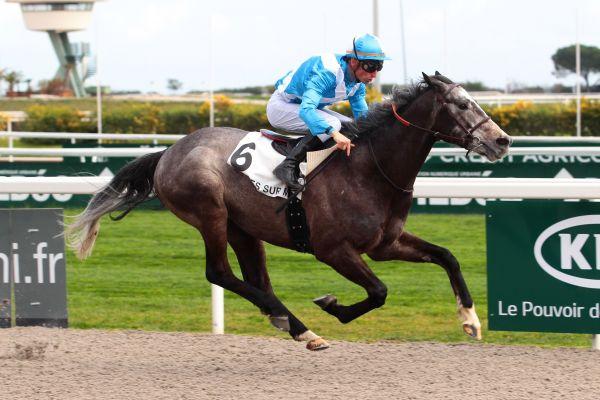 """Résultat de recherche d'images pour """"Aprilios cheval"""""""