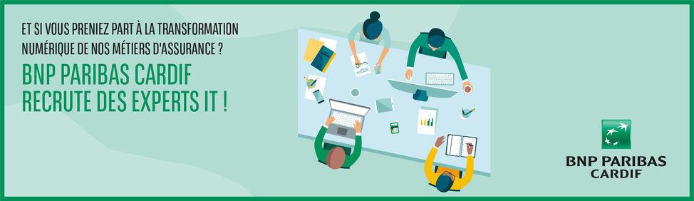 Campagne DSI Cardif_Job Preview -Externe_2 au 20nov.jpg
