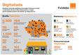 Infografic Digitaliada.png